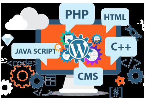 custom website development los angeles and orange county