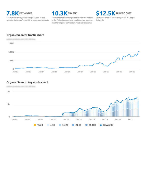organic search keywords report